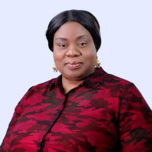 Minister Abimbola Adeyeri